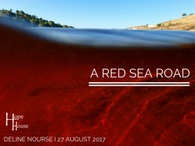 Red Sea 01